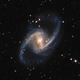 "NGC 1365 - the Great Barred Spiral Galaxy,                                Sebastian ""BastiH..."