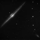 NGC 4565 - 'on edge',                                Tom Gray