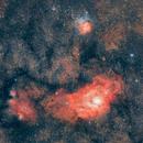 Lagunen- und Trifidnebel, M8 & M20,                                Gerhard Aschenbrenner