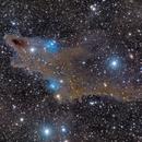 LDN 1235 Shark Nebula,                                Enrique Arce