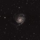 M101,                                MirachsGhost