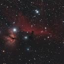 IC434, Horsehead Nebula, Nikon D5300, William Optics ZS61,                                feynman