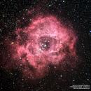 NGC2237/C49 Rosette Nebula,                                Francesco di Biase