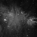 NGC 2264 Halpha,                                Dirk Kligge