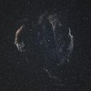 Cygnus loop/ Veil nebula,                                Dmitry Plotikov
