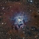Iris Nebula (LRGB),                                Linda