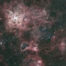NGC 2070 Tarantelnebel,                                Gabriele Gegenbauer
