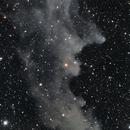 IC 2118,                                Gary Imm