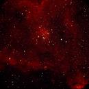 Heart Nebula,                                penaflor