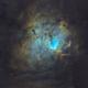 Sh2-206 • NGC 1491 •Fossil Footprint Nebula in SHO,                                Douglas J Struble