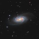 NGC 2903,                                Marc