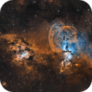 NGC3676  The Statue of Liberty Nebula,                                Logan Carpenter