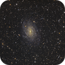 NGC 6744 - Pavo Galaxy,                                Stefan Westphal