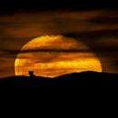 Moonrise behind the LBT,                                Alessandro Cavallaro