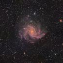 NGC6946 The Fireworks Galaxy,                                niteman1946