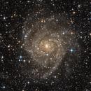 The Hidden Galaxy,                                Alex Roberts