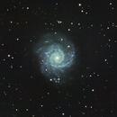 M74 Phantom Galaxy,                                cray2mpx