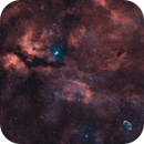 Around Sadr - The nebular complex (IC1318),                                Axel