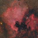 NGC 7000 & IC 5070,                                Markus Blauensteiner