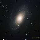 M81 Bode's Galaxy,                                NewLightObservatory