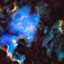 North America and Pelican nebulae in SHO,                                Andrew Gutierrez