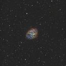 M1  Crab Nebula  (CFHT Palette),                                Atsushi Ono