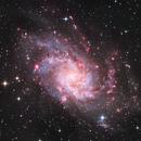 M 33 / Dreiecksgalaxie - Triangulum Galaxy,                                Chris Klein