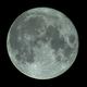 Full Moon,                                Michael J. Mangieri