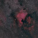 North America Nebula widefield,                                Eric Cauble
