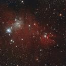 Cone Nebula and friends,                                Richard Cardoe