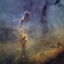 The Elephant's Trunk nebula IC1396,                                Erik Pirtala