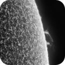 Solar Prominence II, B&W, April 16th 2018,                                Martin (Marty) Wise