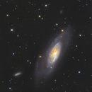 M106 & NGC4217,                                Reg Pratt