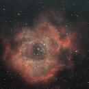 NGC2244 The Rosette Nebula,                                Sebas7777