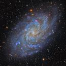 M33 The Triangulum Galaxy,                                Alberto Pisabarro
