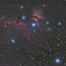 Horsehead and flame Nebula Region,                                Eric Walden