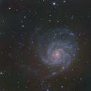 M101,                                Scott Jarvis