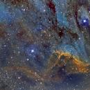 IC5070 Pelican Nebula,                                Stan Smith