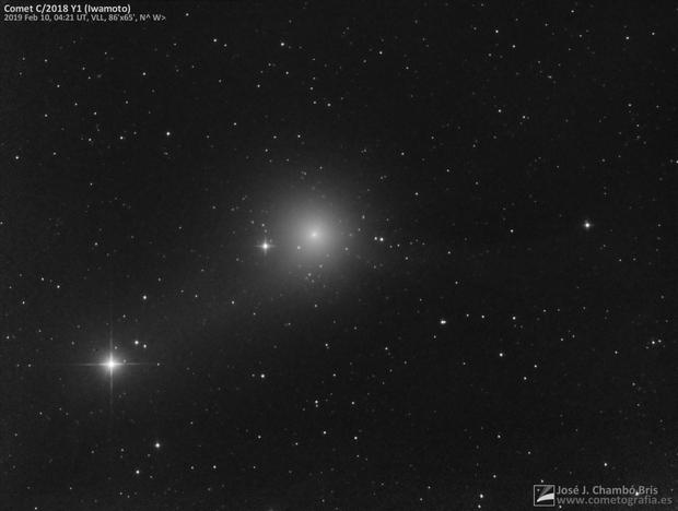 Comet C/2018 Y1 Iwamoto,                                José J. Chambó
