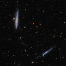 NGC4631 & NGC4656,                                Landon Boehm