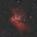 Wizard Nebula NGC 7380,                                Derek Dailey