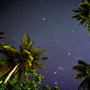 Tropical Orion and Rosetta,                                  Nikolay Vdovin