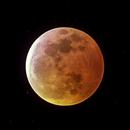 Super Blood Moon,                                Joshua Millard
