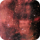 IC 5068 - The Moai nebula,                                  Rich Sky