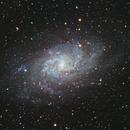 M33,                                Francois Janssen
