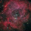 Rosette Nebula, a LRGB picture,                    Niels V. Christensen
