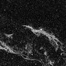NGC6960: Witch's Broom Nebula (H-alpha),                                Daniel Tackley