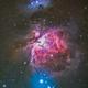 M42,                                David Goldstein