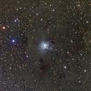 NGC 7023 - Iris Nebula,                                Brian Gfeller