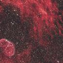 Crescent Nebula Wide Field,                                Dean Salman